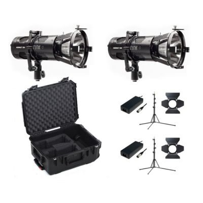 Hive Lighting Hornet 200-C Flood Omni-Color LED 2 Light Kit with 2 Stands and Case (Custom Foam)